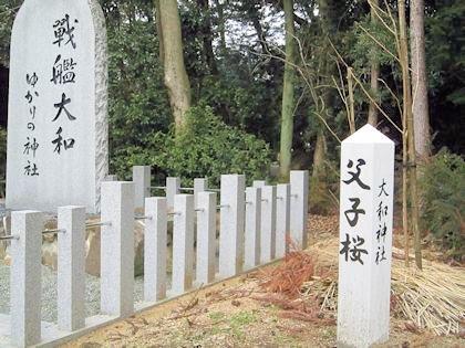 大和神社の父子桜