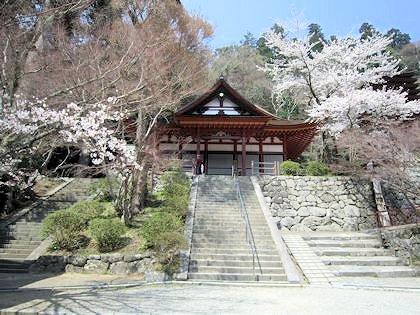 談山神社権殿と桜