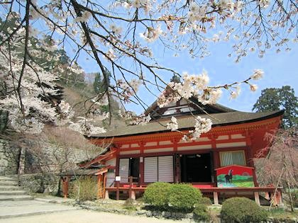 談山神社の桜
