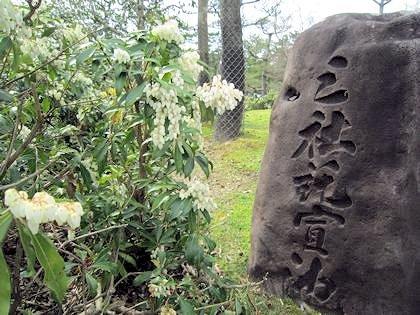 東大寺の三社託宣池