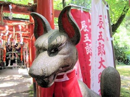 辰五郎大明神の狐