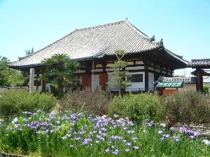法華寺本堂と花
