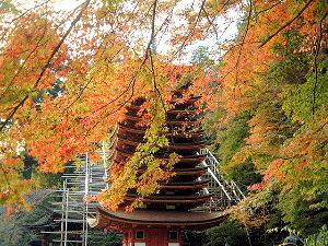 談山神社十三重塔と紅葉