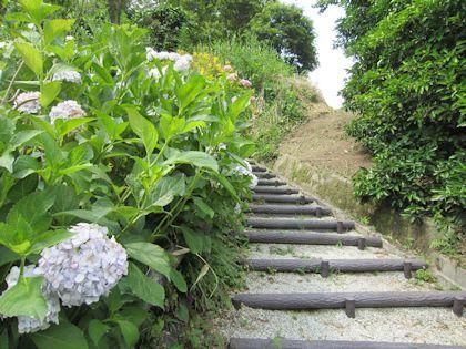 日本武尊白鳥陵へ続く階段