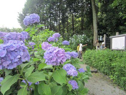 日本武尊白鳥陵と観光客