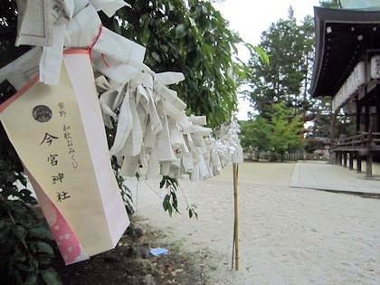 今宮神社の紫野和歌おみくじ