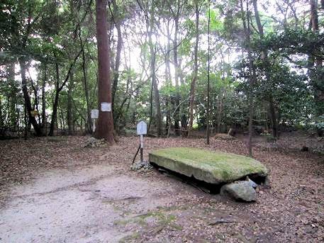 柿本寺跡の天井石