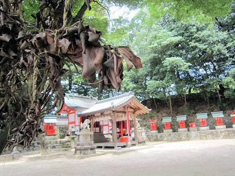 榊と綺原神社拝殿