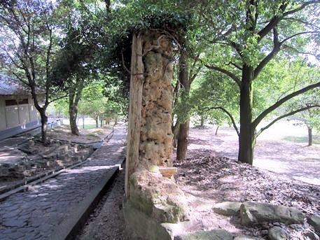 荒池園地の土塀