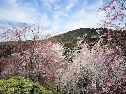 磐座信仰の三輪山