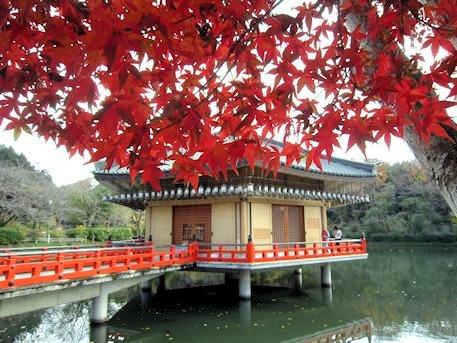 金閣浮御堂と紅葉