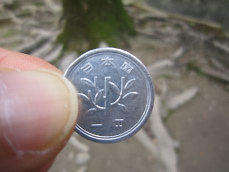 1円硬貨の招霊の木