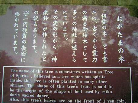石清水八幡宮の招霊の木