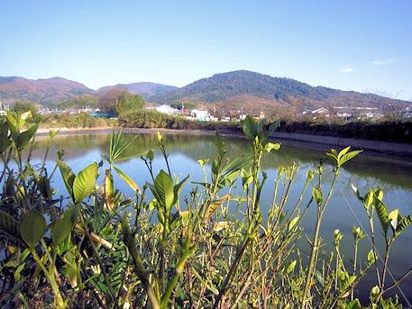 たたなづく三輪山の風景