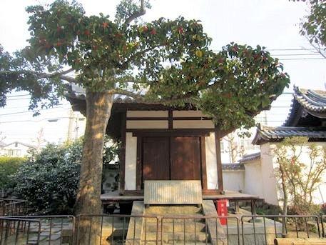 伝香寺の順慶堂