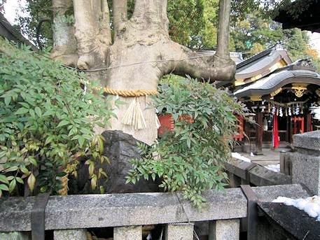 満足稲荷神社の岩神さん