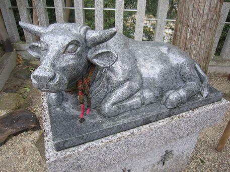 斑鳩神社の牛