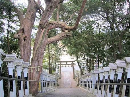 斑鳩神社の石段