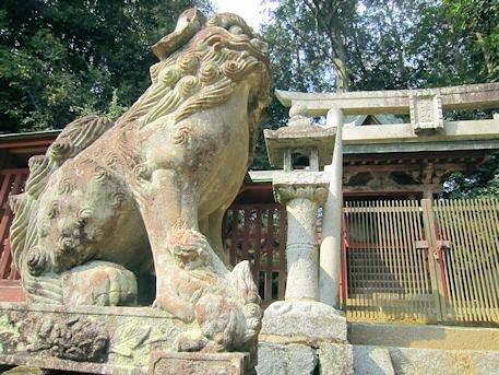 櫛玉命神社の子取り狛犬