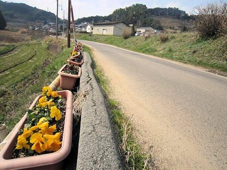 マルコ山古墳のアクセス道