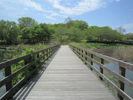 馬見丘陵公園の下池橋