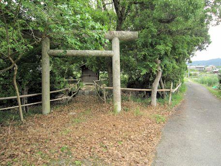 子嶋寺龍の池