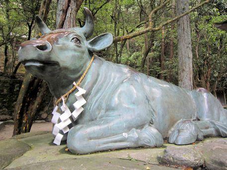 石上神宮の牛