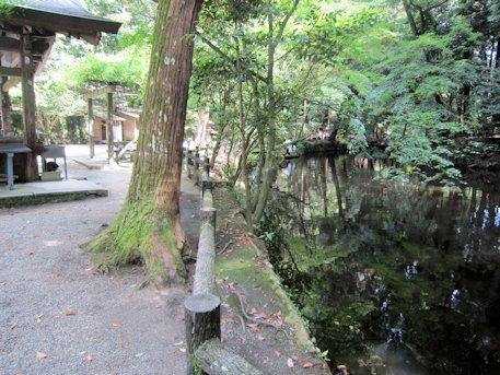 石上神宮の鏡池