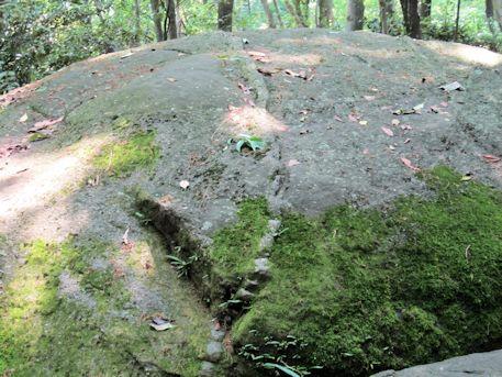 月の誕生石の腹帯ライン