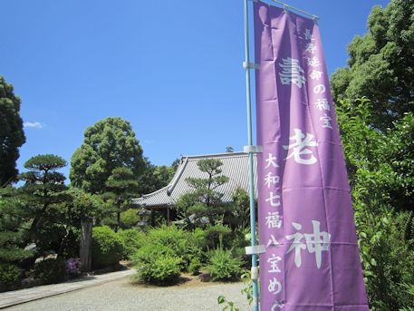 久米寺の幟旗