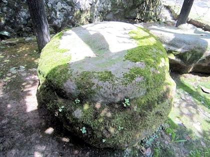 唐招提寺の東塔礎石