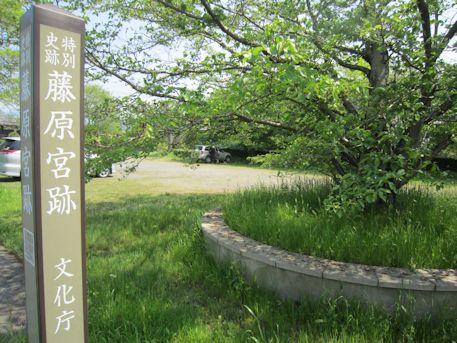 藤原宮跡の駐車場