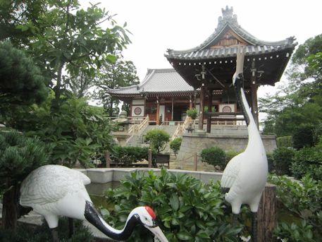 達磨寺鐘楼と本堂