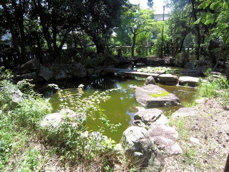 三島神社の池