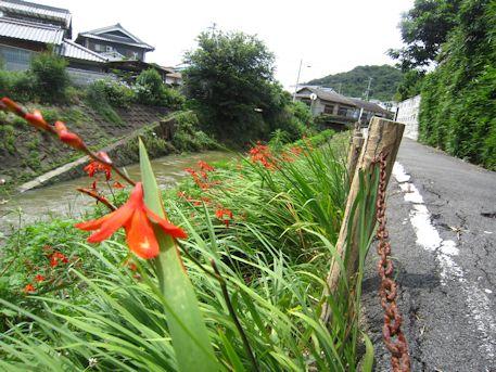 米川と耳成山