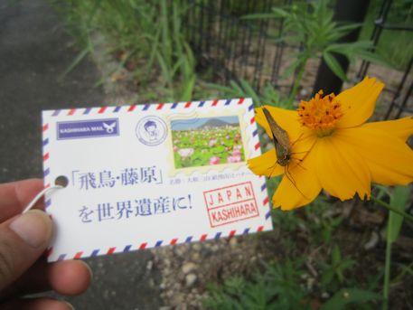 藤原京資料室の記念ネームタグ