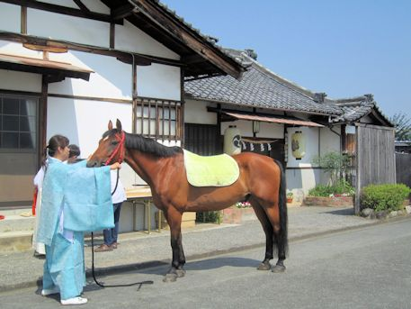 綱越神社社務所前の神馬