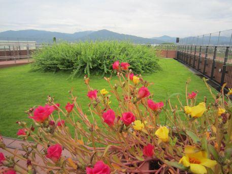 橿原総合庁舎屋上庭園