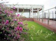 橿原総合庁舎の萩
