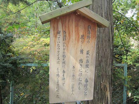百済寺の万葉歌
