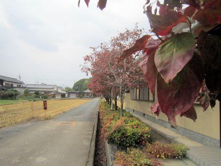 山王神社参道