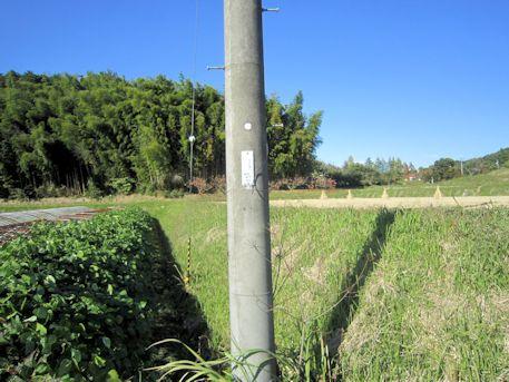 山の辺の道沿いの電柱