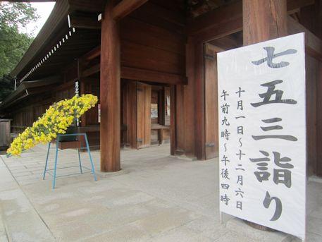 橿原神宮の七五三詣り