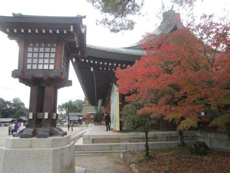 紅葉と橿原神宮外拝殿
