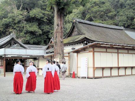 大神神社の巫女