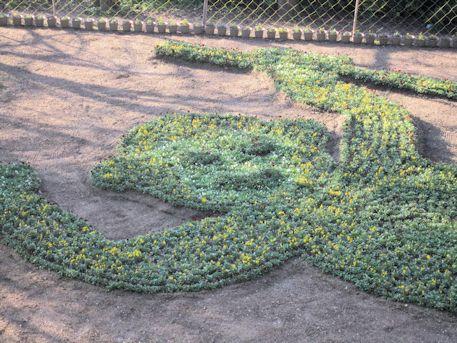 申年のジャンボ花絵