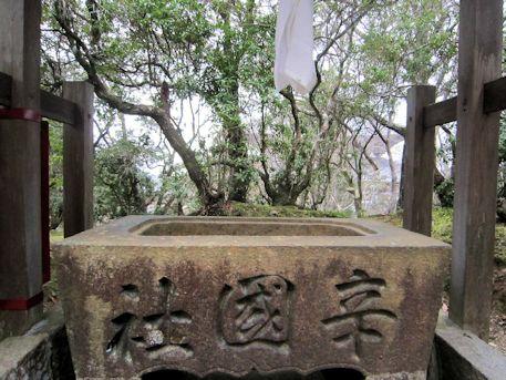 辛国神社の手水