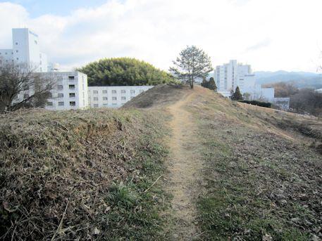 赤土山古墳の墳丘