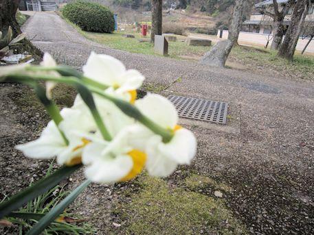 明日香村のマラ石