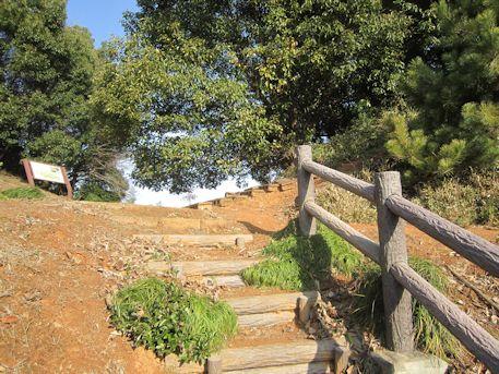珠城山古墳群の階段
